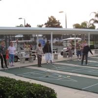 shuffleboard-2012-2